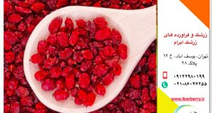 what is puffy barberry?