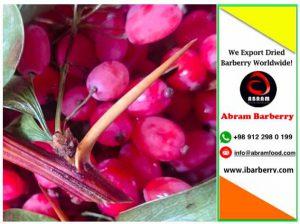 barberry price in Dubai