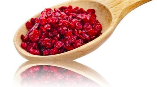 Barberry provider and supplier